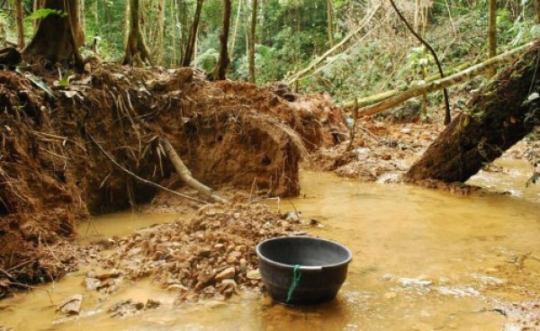 Illegal gold panning in Chiquibul waters