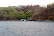 Island communities