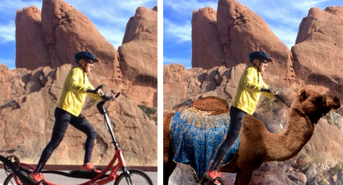 elliptigo to camel