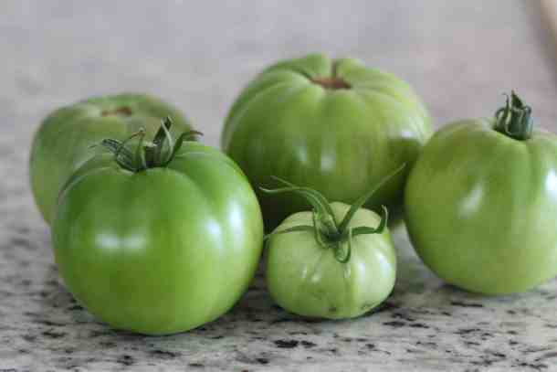 FRIED GREEN TOMATO RECIPE
