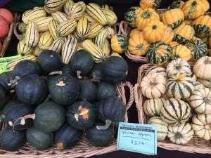 squash, farmers market squash, fall harvest at farmer's market, variety of squash