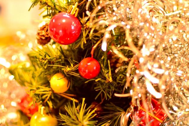 クリスマスのデートに昭和記念公園のイルミネーションはアリ?花火の時間や混雑状況は?