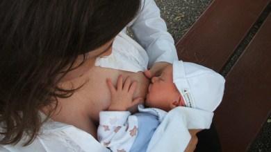 Photo of Querétaro celebrará la Semana Mundial de la Lactancia Materna