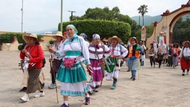 Photo of Peregrinación no es solamente caminar; se debe obedecer, este año no habrá romería