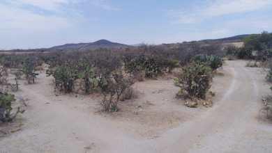 Photo of SEDESU niega que haya permisos para desarrollos habitacionales en el Zapote