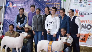 Photo of Feria Internacional Ganadera de Querétaro 2020 aun en la incertidumbre