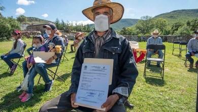 Photo of Ganado en El Marqués está libre de brucelosis y tuberculosis