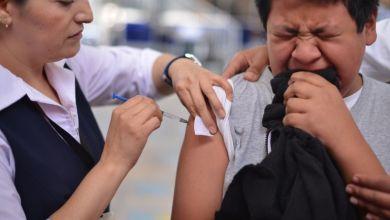 Photo of Querétaro adelantará vacunación contra influenza