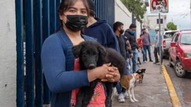 Photo of El Marqués retoma el programa Jornadas Comunitarias