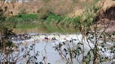 Photo of Saneamiento del Río Querétaro vincula a empresas, academia y Estado