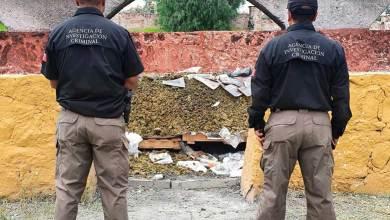 Photo of Destruyen en Querétaro 884 kilogramos de droga