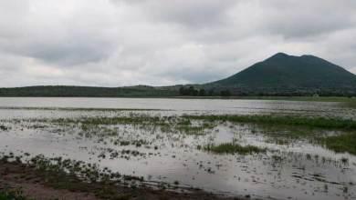 Photo of SEDEA reconoce buenas prácticas en presa de Santa Catarina