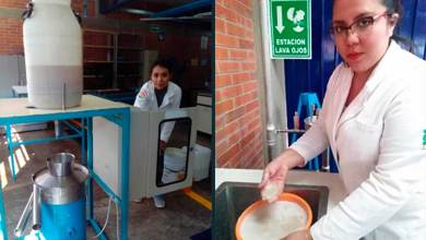 Photo of Semilla de tamarindo puede ayudar a disminuir uso de plástico