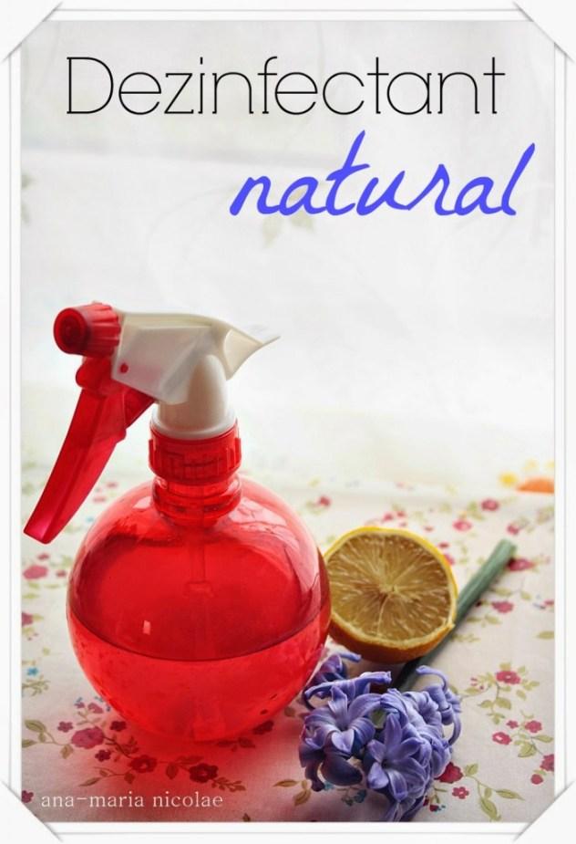 dezinfectant-natural-700x1024