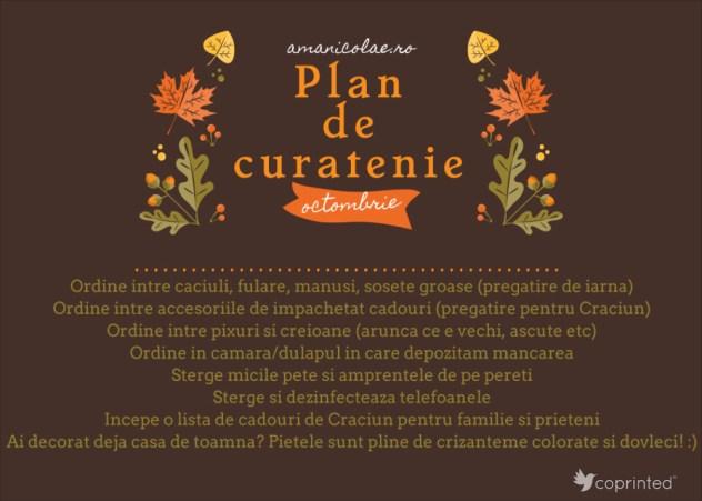 plan de curatenie