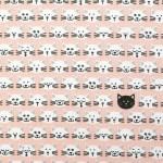 chats-sur-fond-rose-pastel