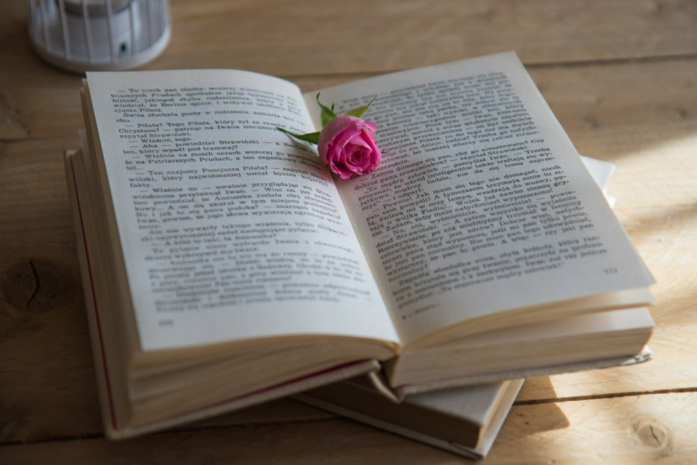 book with a rose bookmark