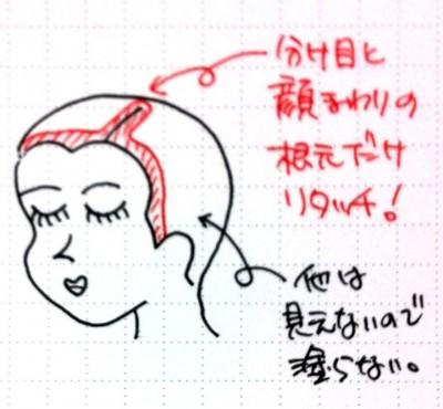 ポイントカラー 白髪染め 世田谷区豪徳寺