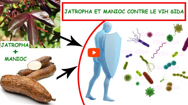 JATROPHA ET MANIOC CONTRE LE VIH SIDA