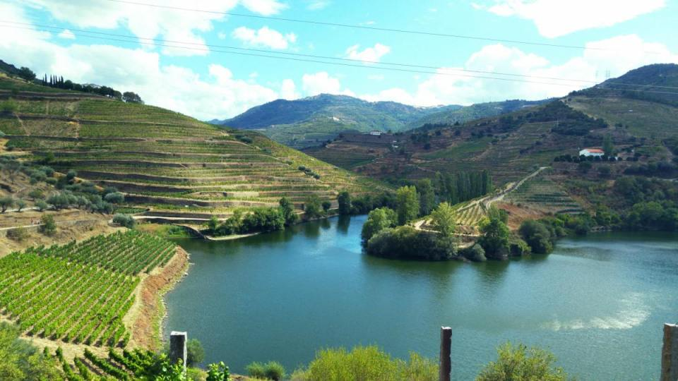 Encostas do Douro