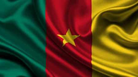 Bandeira dos Camarões