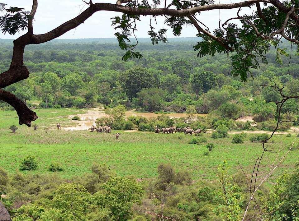 Parque Nacional na Costa do Marfim
