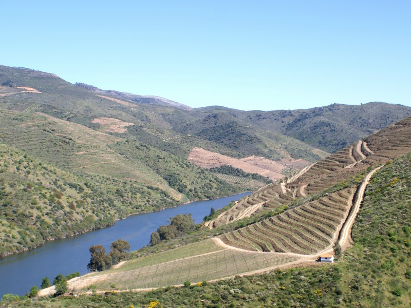 Sabrosa- Portugal