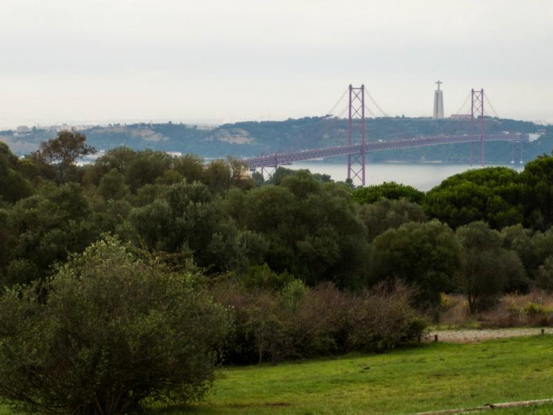 Parque Natural de Portugal