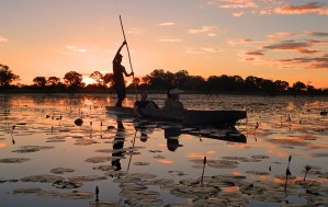 Destinos - Safari- Africa Austral
