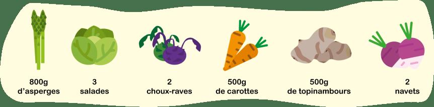 800g d'asperges, 3 salades, 2 choux-raves, 500g de carottes, 500g de topinambours, 2 navets