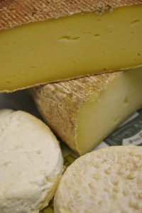Fromage bio au lait de vache