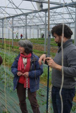 20170506 journee plants jardin 07