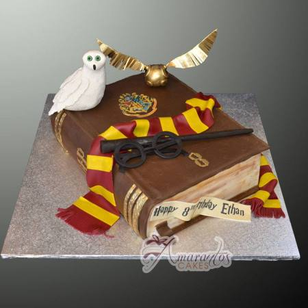 Harry Potter themed cake- NC36