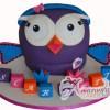 Hootabelle Cakes NC493