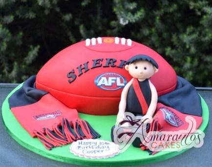 AFL 3D Cake Essendon - Amarantos Cakes Melbourne