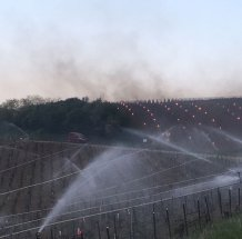 Chablis spraying (Ulysse Paris)