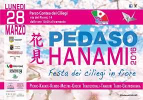 Hanami nelle Marche!?  「 マルケで花見?・Marche de Hanami?」