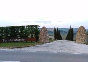 マルケ州ワイナリー『Tenute MURÓLA/ テヌーテ ムローラ』へ