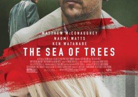 Mare di alberi