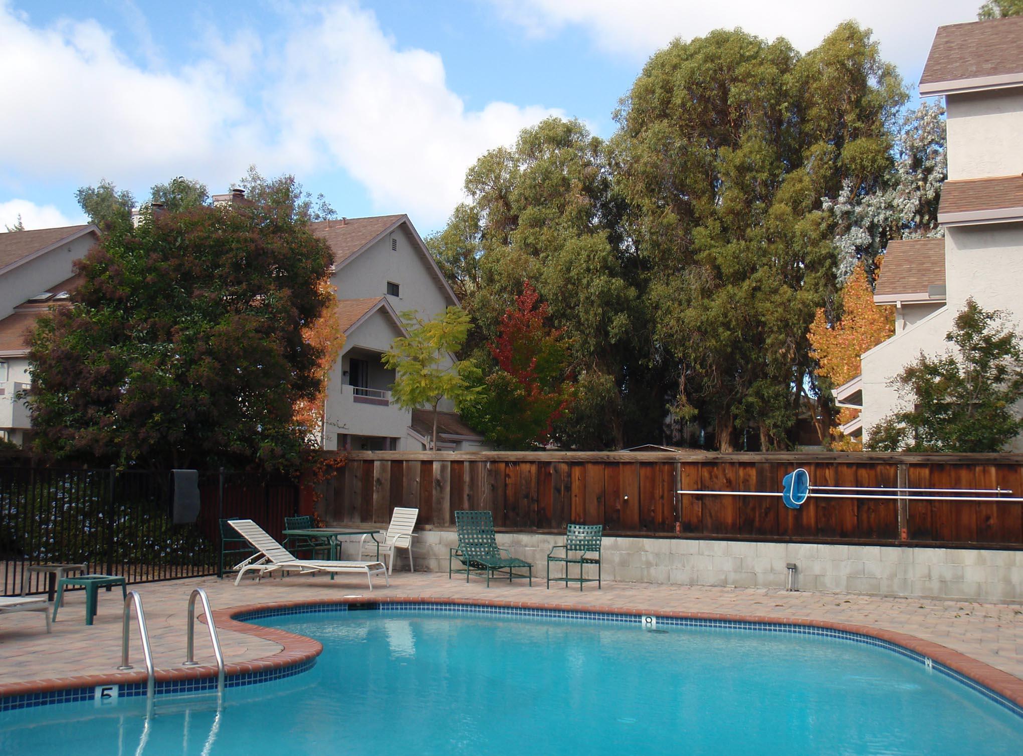 My Pool in the Fall