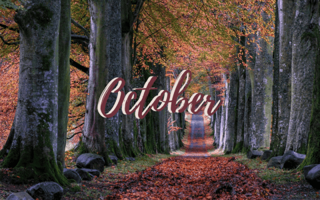 Freebie: October Desktop Wallpaper 2