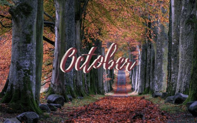 Freebie: October Desktop Wallpaper 2