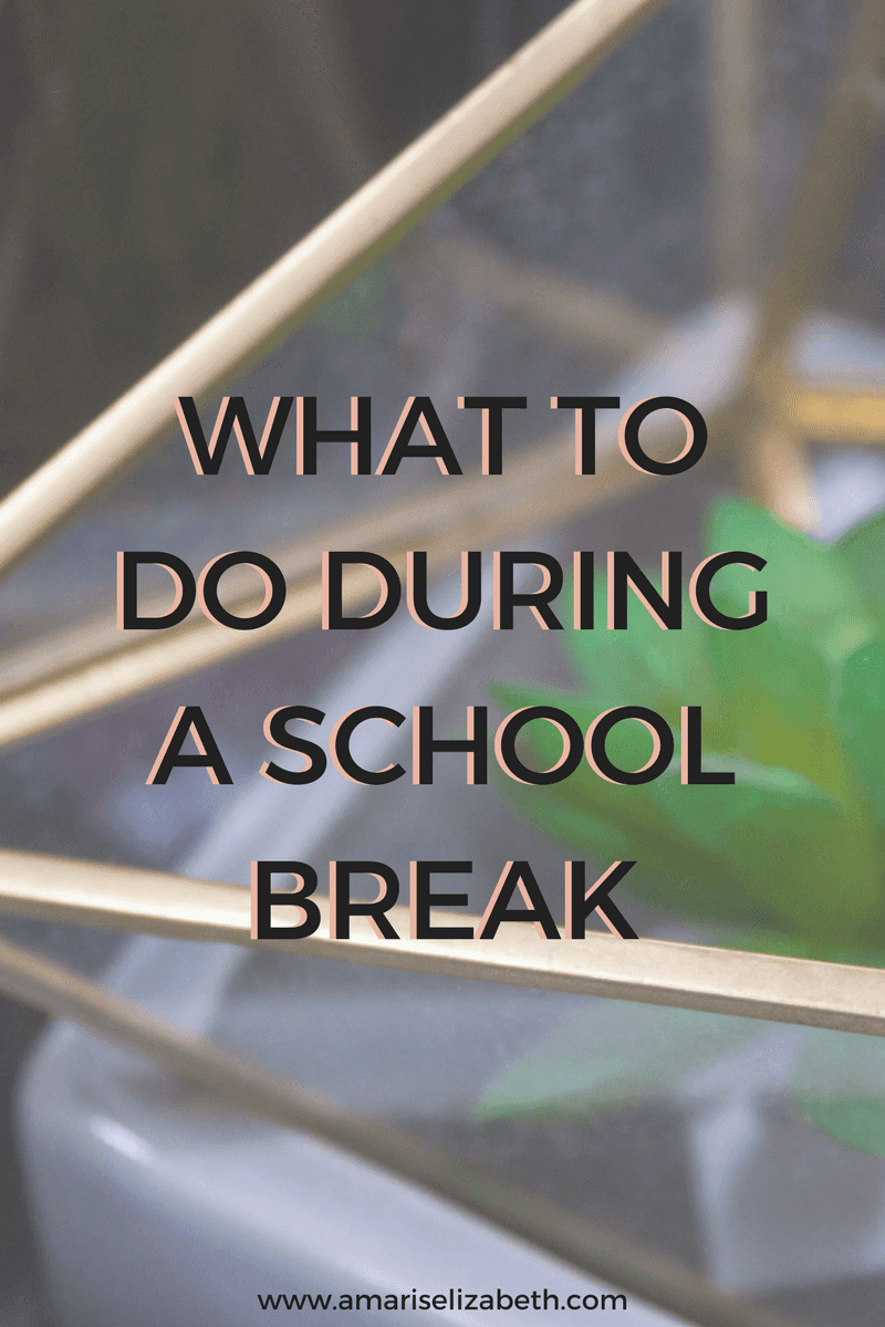 Things To Do During A School Break