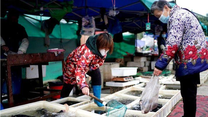 Wuhan sea food market