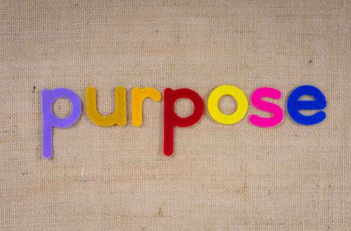 Purpose is the key to find your happiness.