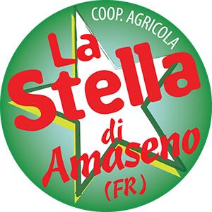 logo_stella2015_png