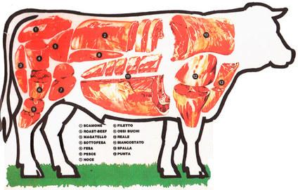 Da non perdere: Le parti anatomiche del bufalo mediterraneo