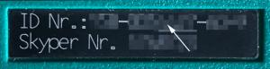 RIC für DAPNET auf Skyper