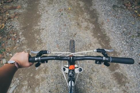 02-pulau-ubin-bike-ride