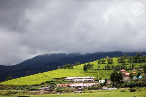 Nuwara Eliya, Sri Lanka